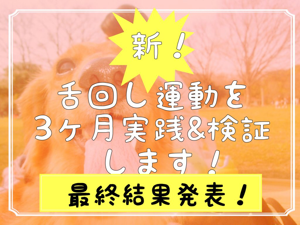 新・舌回し運動の最終結果発表!3ヶ月後のビフォーアフター画像!